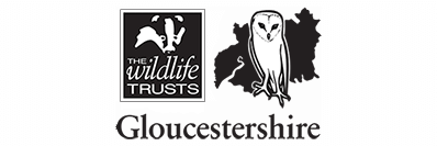 think-big-picture-about-who-ive-worked-with-logo-gloucestershire-wildlife-trust